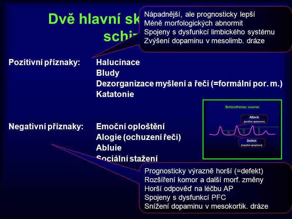Dvě hlavní skupiny příznaků schizofrenie Pozitivní příznaky: Halucinace Bludy Dezorganizace myšlení a řeči (=formální por. m.) Katatonie Negativní pří