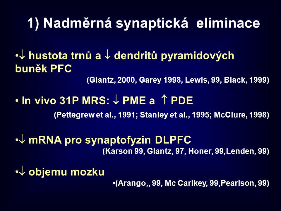 1) Nadměrná synaptická eliminace  hustota trnů a  dendritů pyramidových buněk PFC (Glantz, 2000, Garey 1998, Lewis, 99, Black, 1999) In vivo 31P MRS
