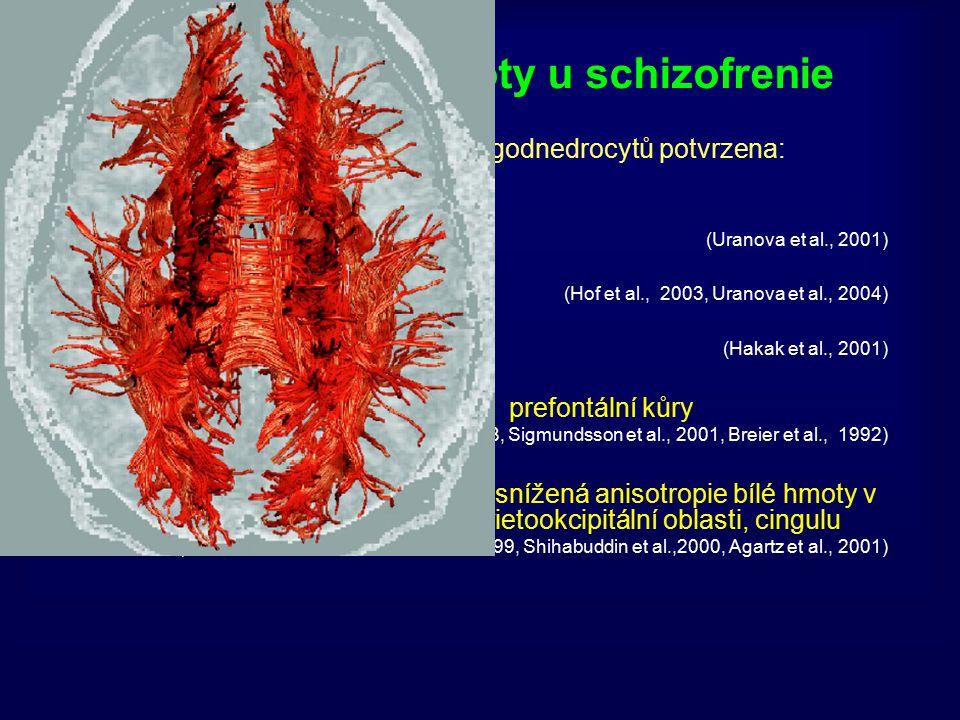 Patologie bílé hmoty u schizofrenie Redukce počtu a funkce oligodnedrocytů potvrzena: Ultrastrukturálně (Uranova et al., 2001) Cytoarchitektonicky (Ho