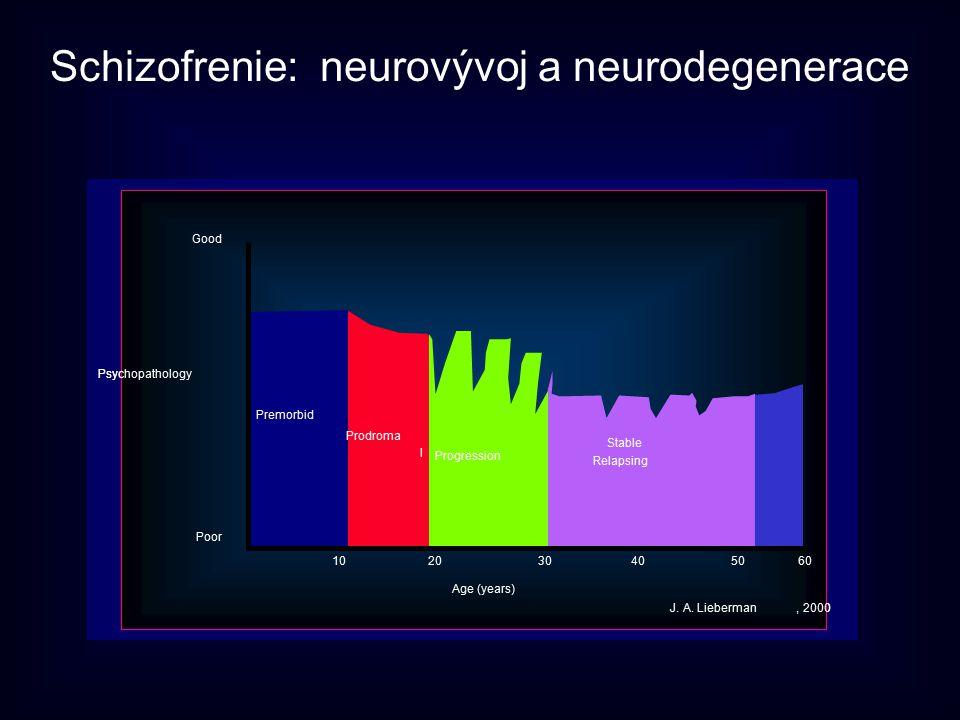 Schizofrenie: neurovývoj a neurodegenerace 102030405060 Good Psychopathology Poor Age (years) Premorbid Prodroma l Progression Stable Relapsing J. A.