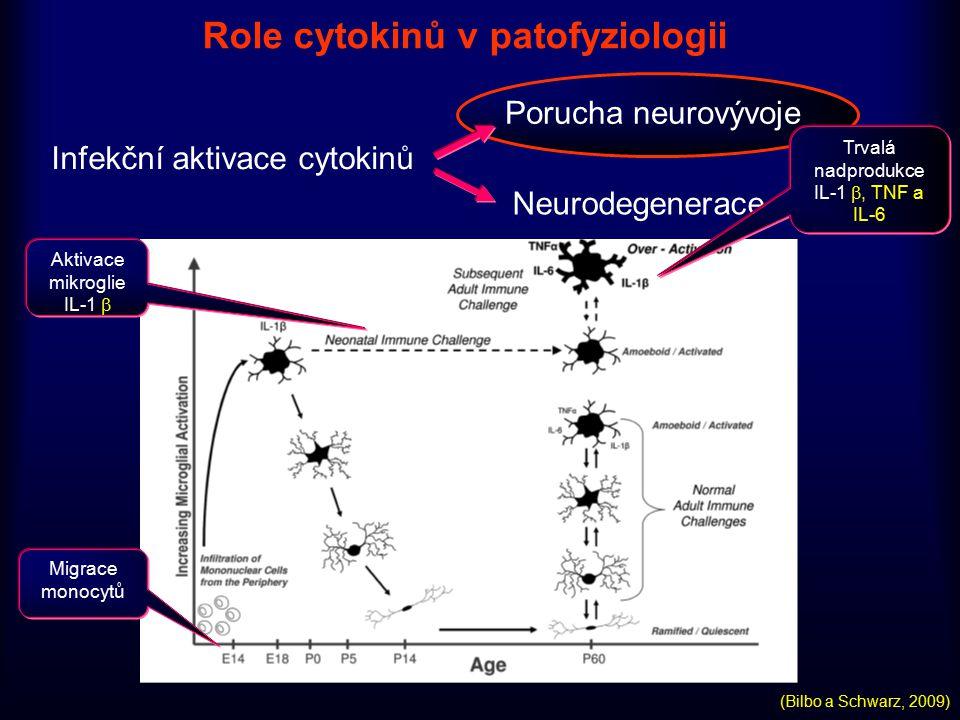 Role cytokinů v patofyziologii Infekční aktivace cytokinů Porucha neurovývoje Neurodegenerace Migrace monocytů Aktivace mikroglie IL-1  Trvalá nadpro