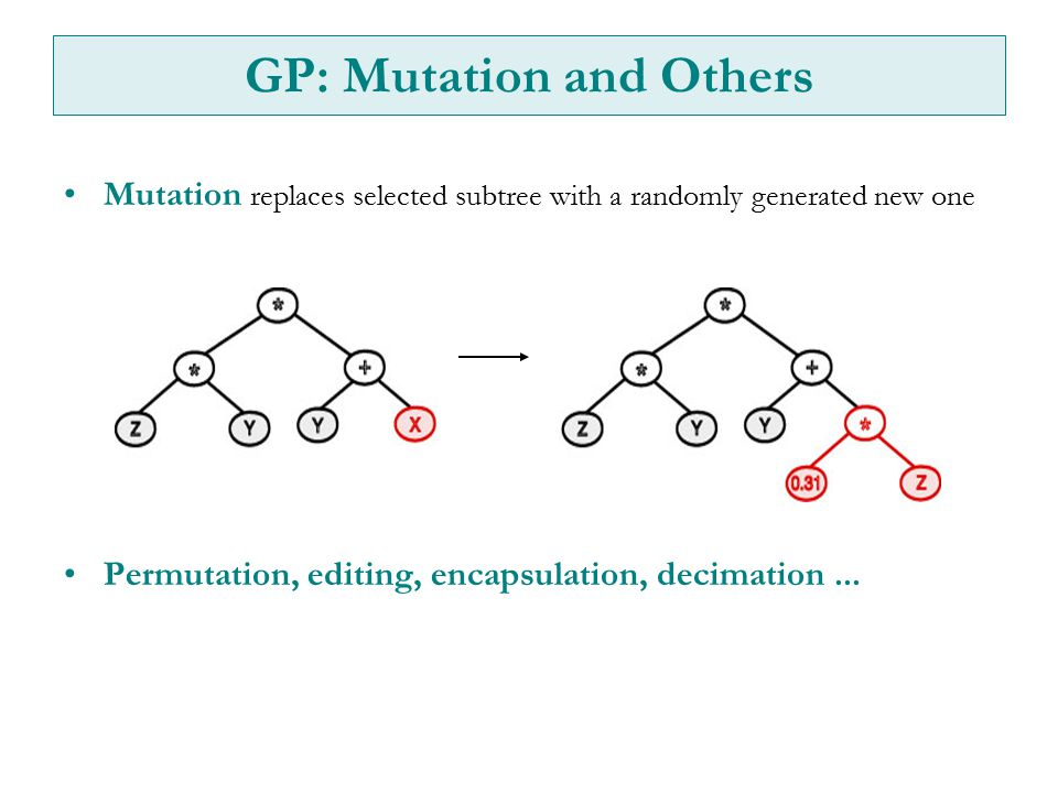 Mutation replaces selected subtree with a randomly generated new one Permutation, editing, encapsulation, decimation...