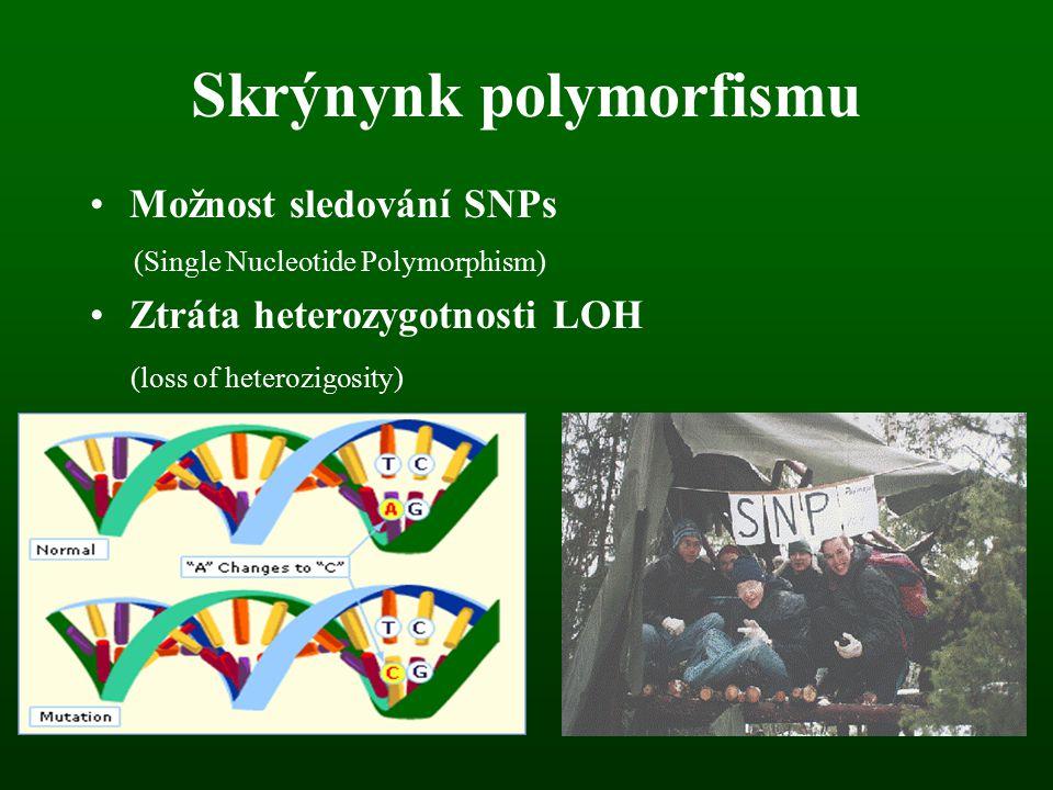 Skrýnynk polymorfismu Možnost sledování SNPs (Single Nucleotide Polymorphism) Ztráta heterozygotnosti LOH (loss of heterozigosity)