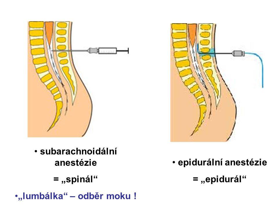 """subarachnoidální anestézie = """"spinál"""" """"lumbálka"""" – odběr moku ! epidurální anestézie = """"epidurál"""""""