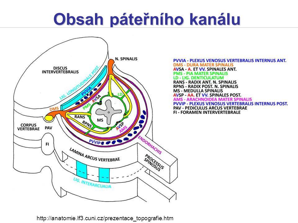 Obsah páteřního kanálu http://anatomie.lf3.cuni.cz/prezentace_topografie.htm
