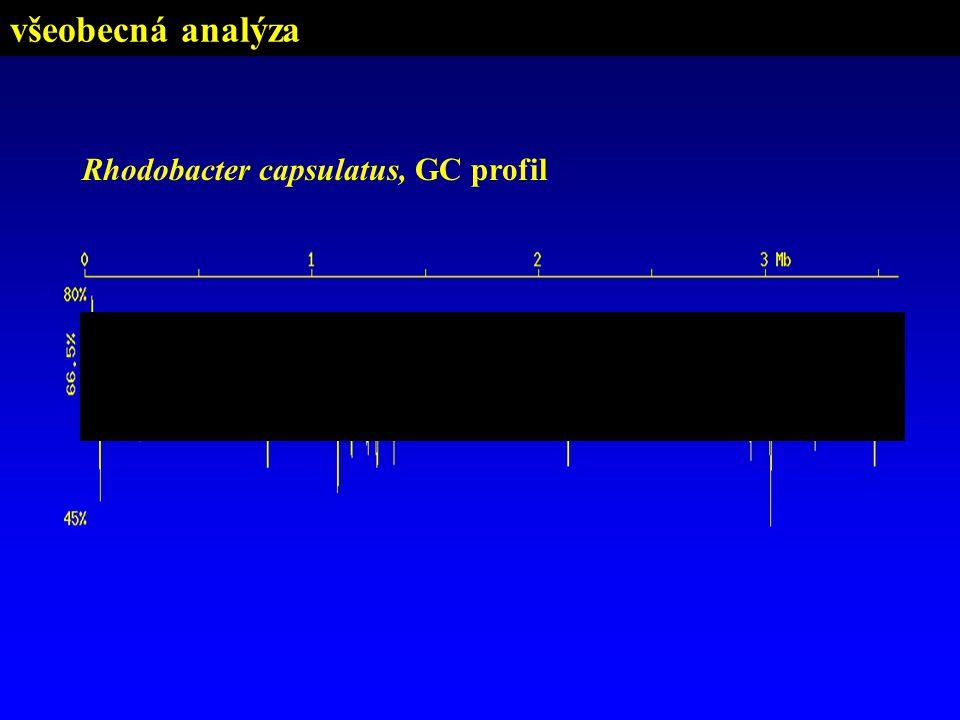 Rhodobacter capsulatus, GC profil všeobecná analýza