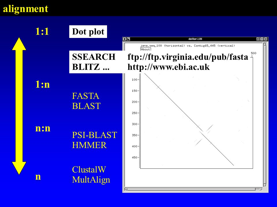 PSI-BLAST HMMER SSEARCH BLITZ FASTA BLAST Dot plot 1:1 n:n n ClustalW MultAlign 1:n Dot plot SSEARCHftp://ftp.virginia.edu/pub/fasta BLITZ...http://www.ebi.ac.uk alignment