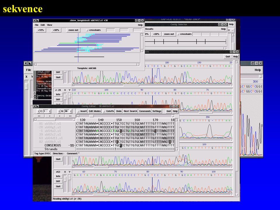 PSI-BLAST HMMER SSEARCH BLITZ FASTA BLAST Dot plot 1:1 n:n n ClustalW MultAlign 1:n Dot plot SSEARCHftp://ftp.virginia.edu/pub/fasta BLITZ...http://www.ebi.ac.uk alignment