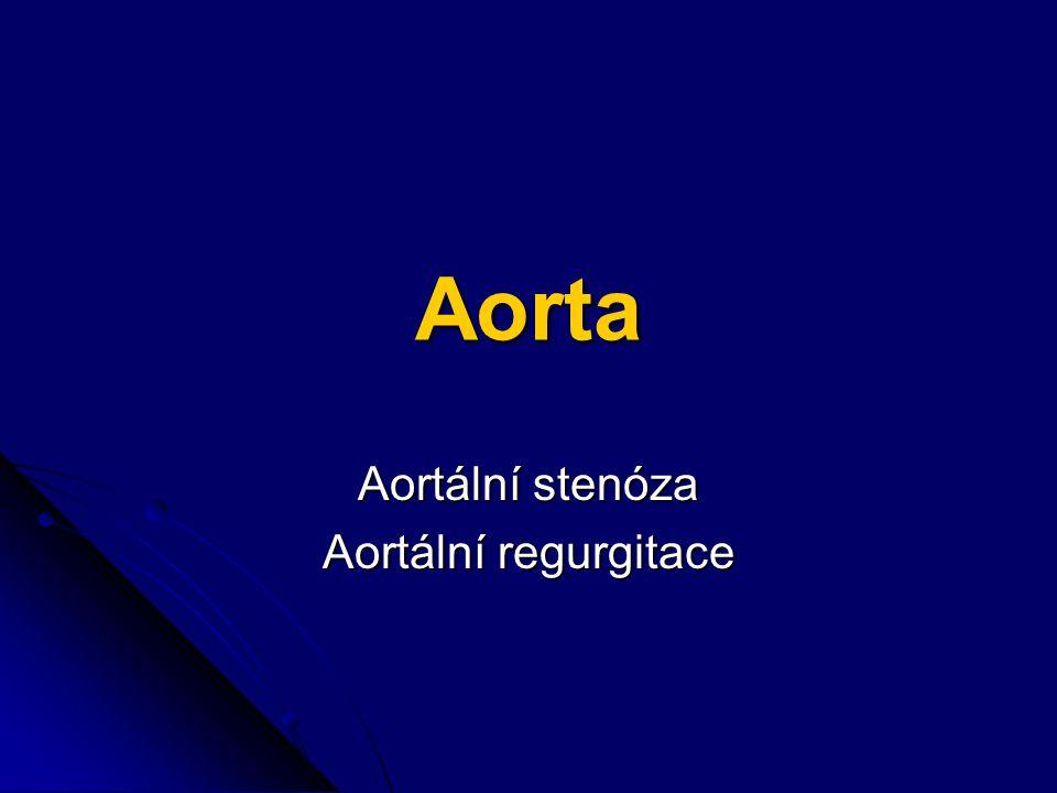 Aorta Aortální stenóza Aortální regurgitace