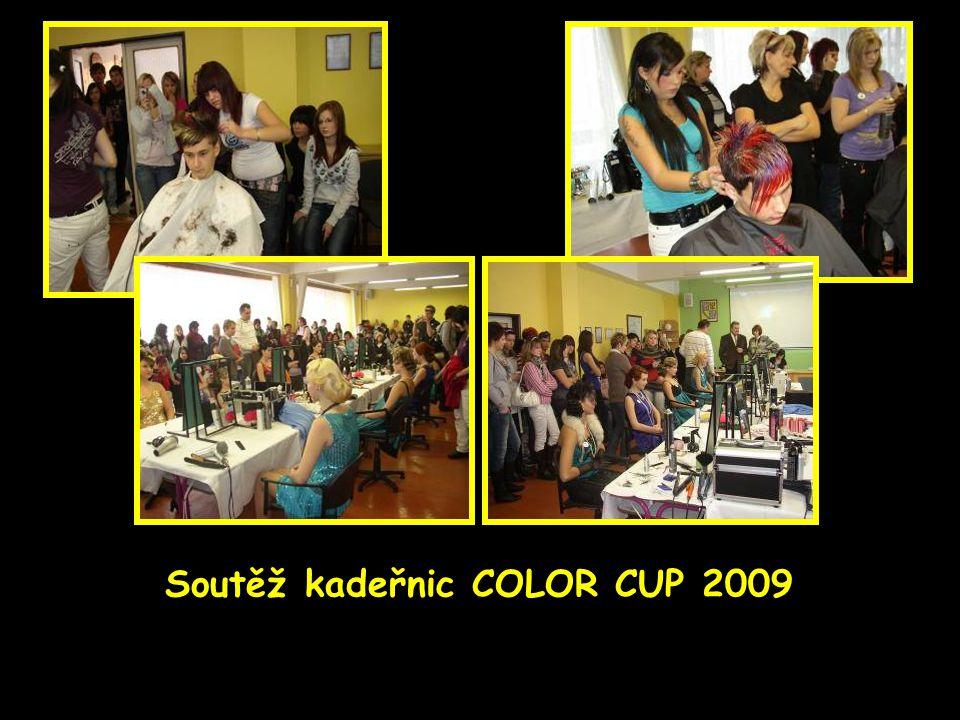 Soutěž kadeřnic COLOR CUP 2009