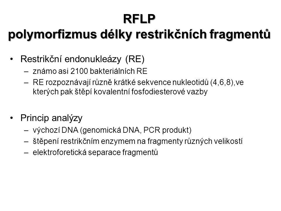 RFLP polymorfizmus délky restrikčních fragmentů Restrikční endonukleázy (RE) –známo asi 2100 bakteriálních RE –RE rozpoznávají různě krátké sekvence nukleotidů (4,6,8),ve kterých pak štěpí kovalentní fosfodiesterové vazby Princip analýzy –výchozí DNA (genomická DNA, PCR produkt) –štěpení restrikčním enzymem na fragmenty různých velikostí –elektroforetická separace fragmentů