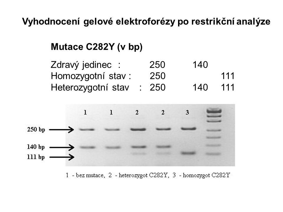 Mutace C282Y (v bp) Zdravý jedinec: 250140 Homozygotní stav: 250 111 Heterozygotní stav:250140111 Vyhodnocení gelové elektroforézy po restrikční analýze