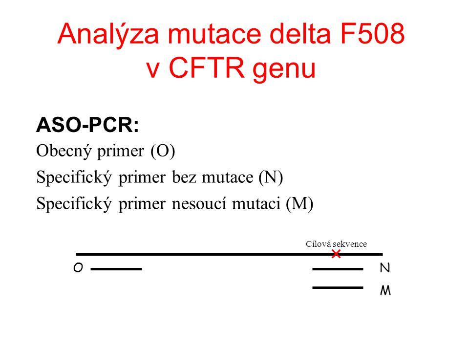 Analýza mutace delta F508 v CFTR genu Obecný primer (O) Specifický primer bez mutace (N) Specifický primer nesoucí mutaci (M) M O Cílová sekvence N ASO-PCR: