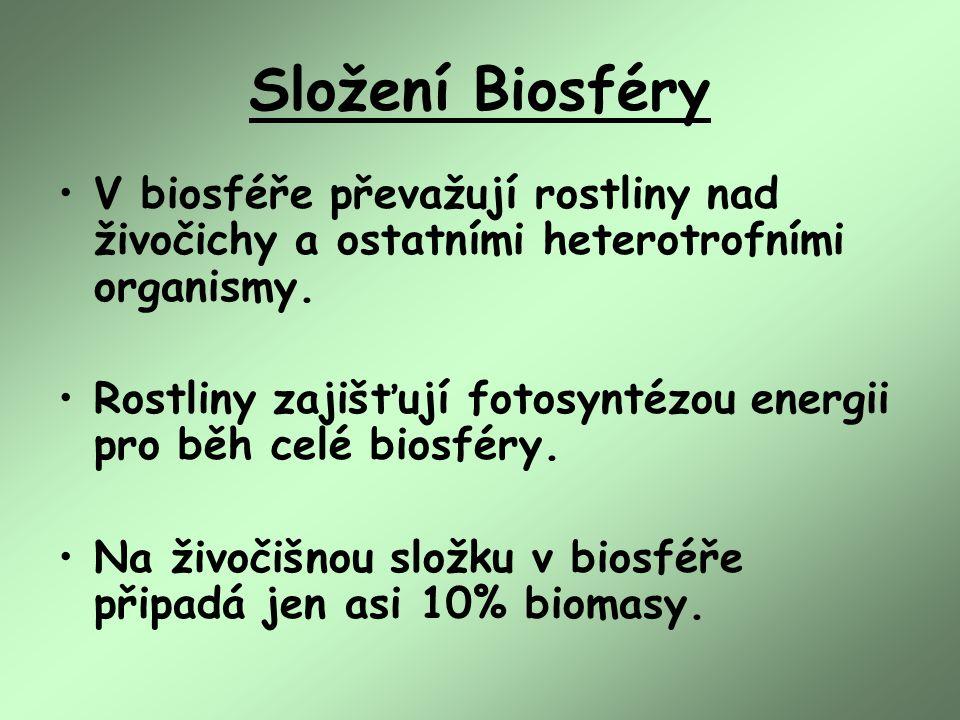 Složení Biosféry V biosféře převažují rostliny nad živočichy a ostatními heterotrofními organismy.