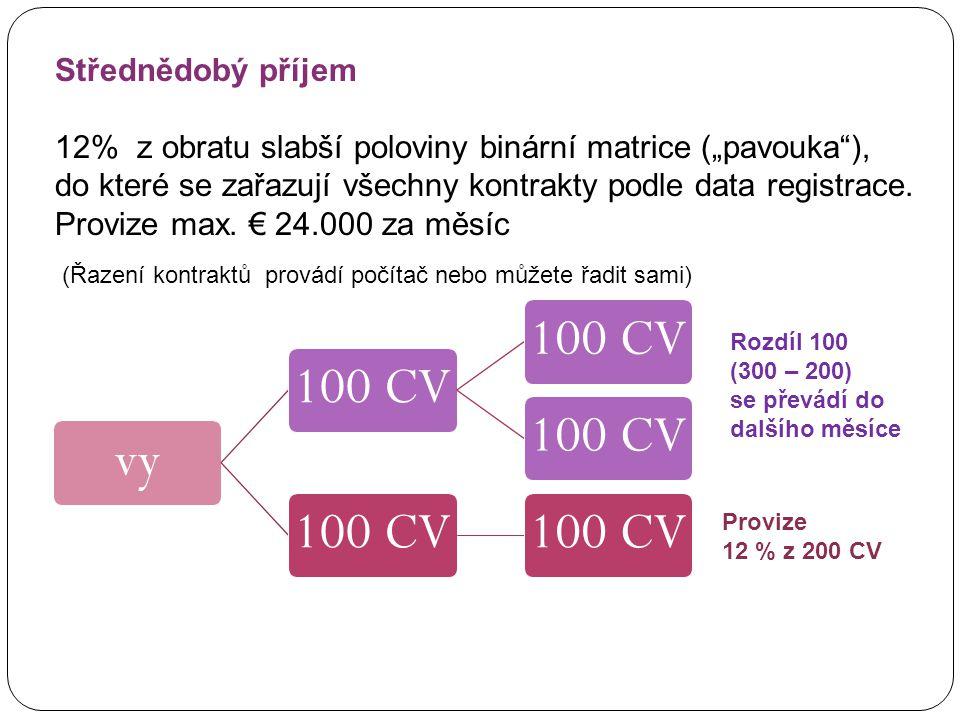 """vy100 CV (Řazení kontraktů provádí počítač nebo můžete řadit sami) Střednědobý příjem 12% z obratu slabší poloviny binární matrice (""""pavouka ), do které se zařazují všechny kontrakty podle data registrace."""