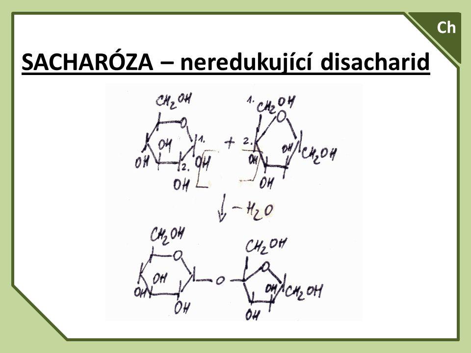 SA A Ch SACHARÓZA – neredukující disacharid