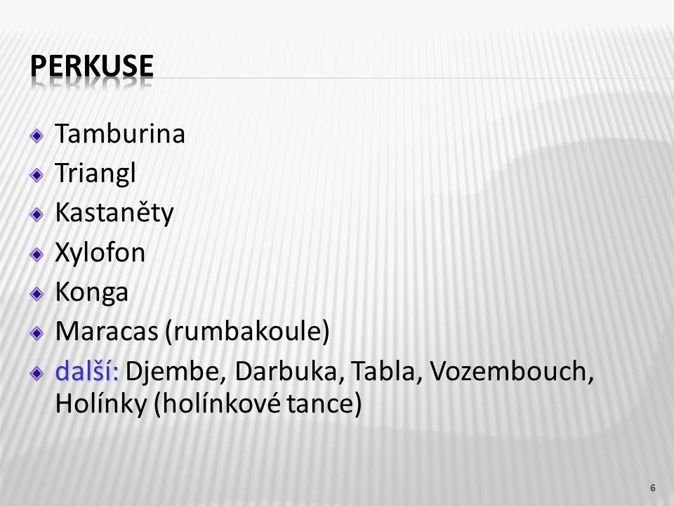 Tamburina Triangl Kastaněty Xylofon Konga Maracas (rumbakoule) další: další: Djembe, Darbuka, Tabla, Vozembouch, Holínky (holínkové tance) 6