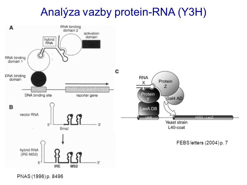 Analýza vazby protein-RNA (Y3H) PNAS (1996) p. 8496 FEBS letters (2004) p. 7