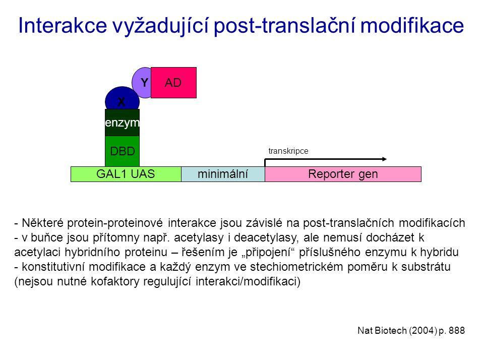 Y X Interakce vyžadující post-translační modifikace Reporter genminimálníGAL1 UAS transkripce DBD AD enzym Nat Biotech (2004) p. 888 - Některé protein