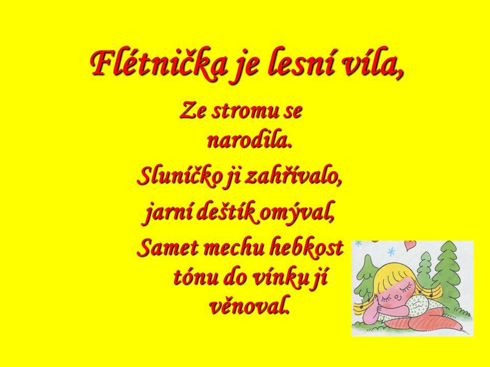 Hrajeme si s Flétničkou Výukový program 1. ročník uč. 1. st. ZŠ Eva Červinková