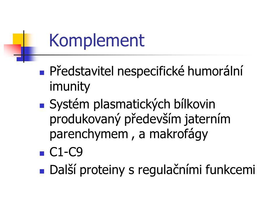 Komplement Představitel nespecifické humorální imunity Systém plasmatických bílkovin produkovaný především jaterním parenchymem, a makrofágy C1-C9 Dal