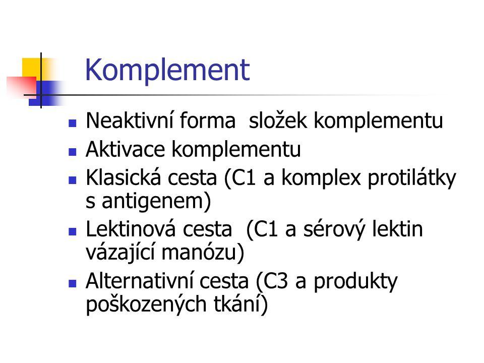 Komplement Neaktivní forma složek komplementu Aktivace komplementu Klasická cesta (C1 a komplex protilátky s antigenem) Lektinová cesta (C1 a sérový lektin vázající manózu) Alternativní cesta (C3 a produkty poškozených tkání)