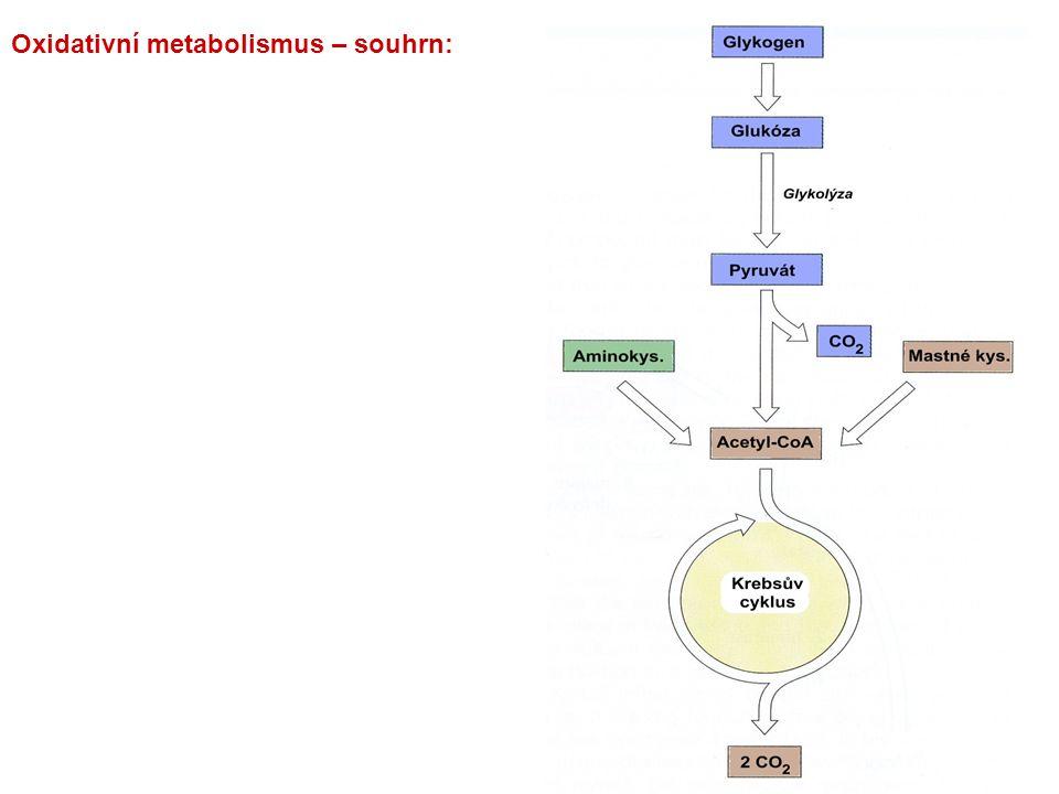 Formy transportu CO 2 : CO 2 v krvi: 1.ve formě HCO 3 - (ionizace H 2 CO 3 )75-85 % 2.