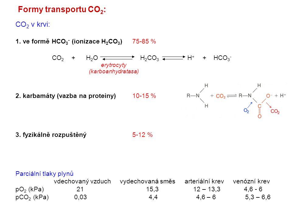 Transport O 2 a CO 2 : Bohrův efekt (oxyhemoglobin je silnější kyselina, uvolňuje H + ) Izohydrický transport CO 2 (schopnost Hb vychytávat H + bez změn pH přes Bohrův efekt) Chloridový posun = Hamburgerův efekt (výměna Cl - a HCO 3 - mezi plasmou a erytrocyty)
