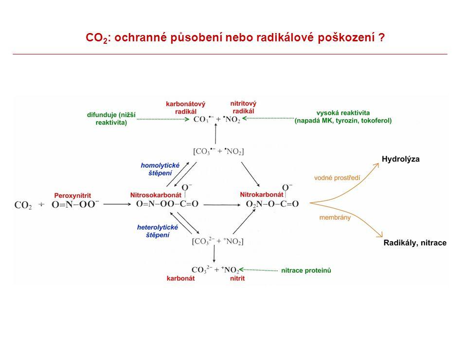 CO 2 : ochranné působení nebo radikálové poškození ?