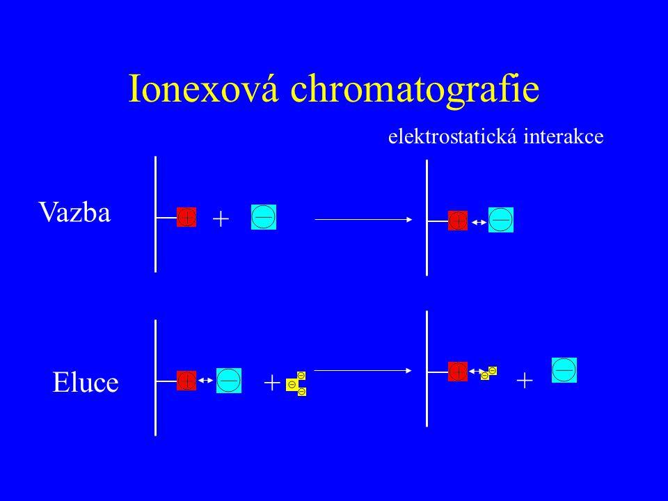 + elektrostatická interakce + + Vazba Eluce