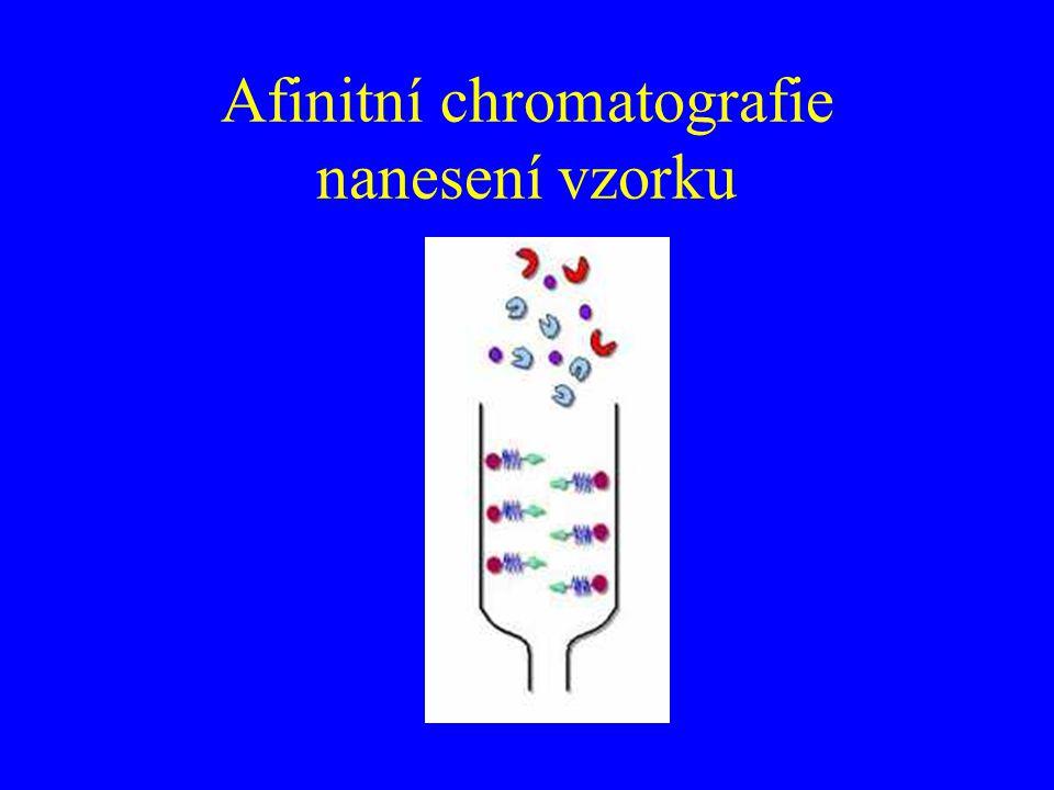 Afinitní chromatografie nanesení vzorku
