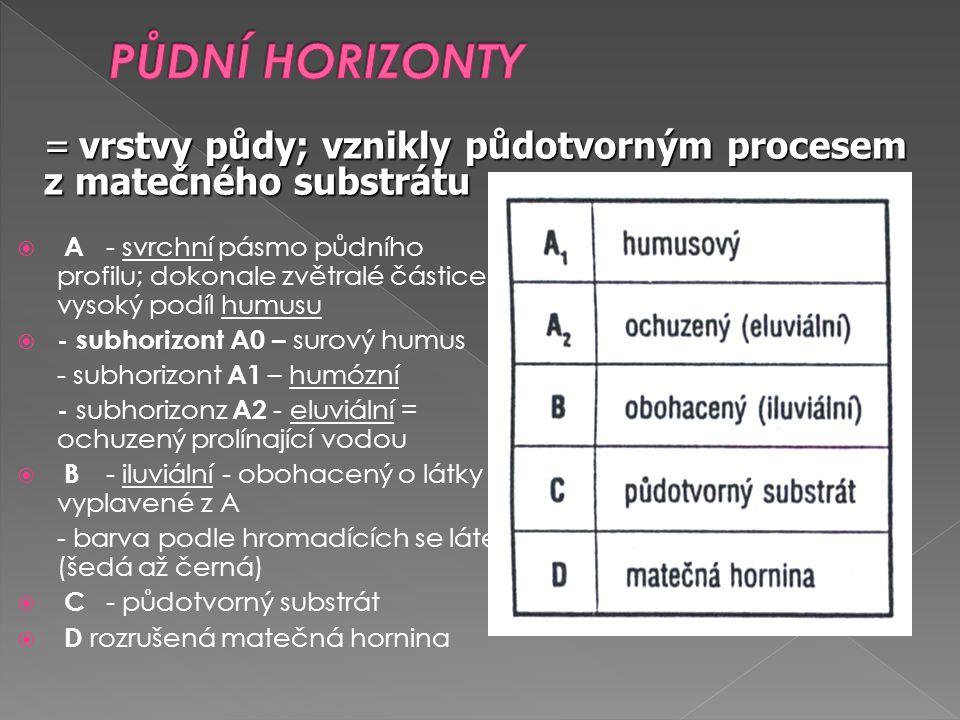  A - svrchní pásmo půdního profilu; dokonale zvětralé částice, vysoký podíl humusu  - subhorizont A0 – surový humus - subhorizont A1 – humózní - subhorizonz A2 - eluviální = ochuzený prolínající vodou  B - iluviální - obohacený o látky vyplavené z A - barva podle hromadících se látek (šedá až černá)  C - půdotvorný substrát  D rozrušená matečná hornina = vrstvy půdy; vznikly půdotvorným procesem z matečného substrátu