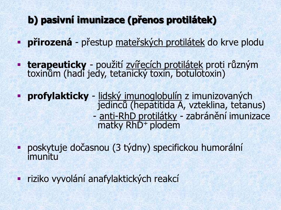 b) pasivní imunizace (přenos protilátek) b) pasivní imunizace (přenos protilátek)  přirozená - přestup mateřských protilátek do krve plodu  terapeut