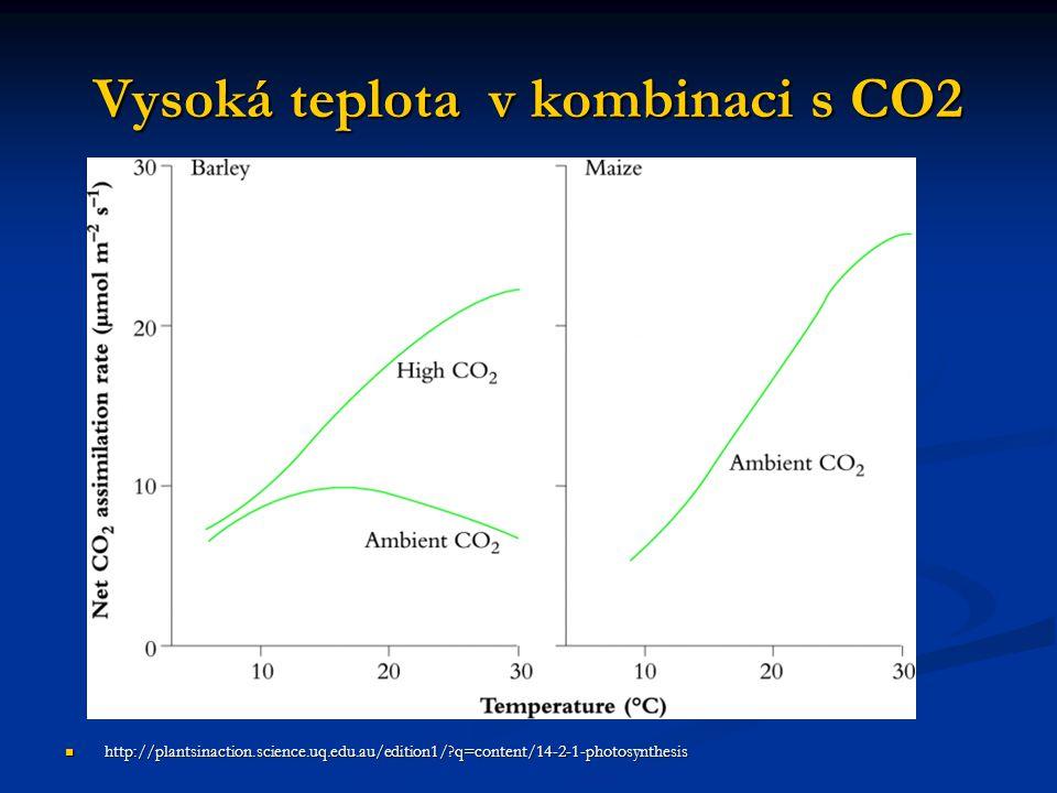 Vysoká teplota v kombinaci s CO2 http://plantsinaction.science.uq.edu.au/edition1/?q=content/14-2-1-photosynthesis http://plantsinaction.science.uq.ed