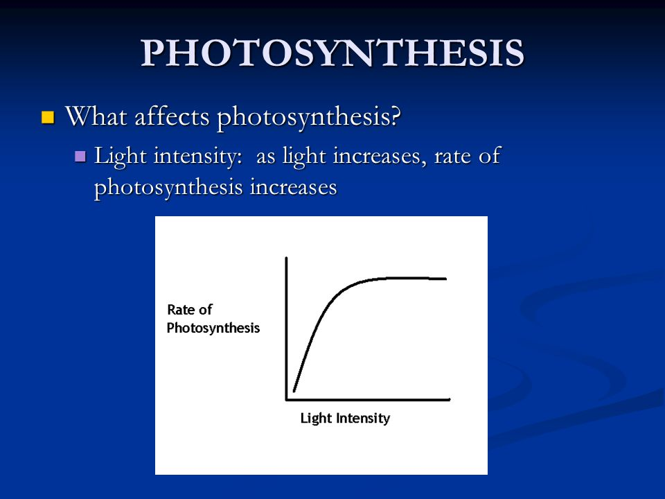 PHOTOSYNTHESIS What affects photosynthesis? What affects photosynthesis? Light intensity: as light increases, rate of photosynthesis increases Light i