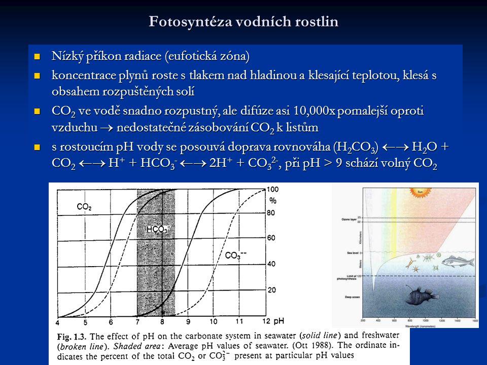 Fotosyntéza vodních rostlin Nízký příkon radiace (eufotická zóna) Nízký příkon radiace (eufotická zóna) koncentrace plynů roste s tlakem nad hladinou