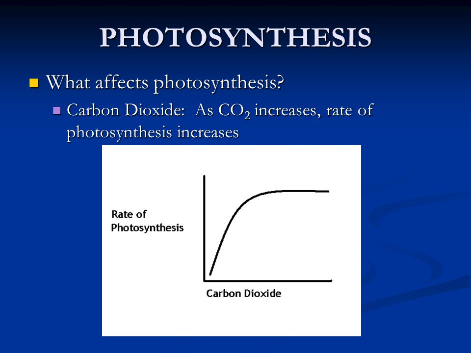 PHOTOSYNTHESIS What affects photosynthesis? What affects photosynthesis? Carbon Dioxide: As CO 2 increases, rate of photosynthesis increases Carbon Di