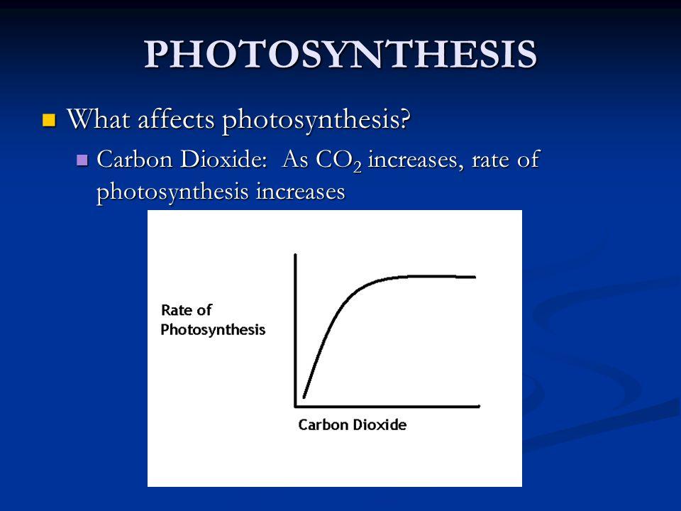 Ekologie C3 a C4 rostlin Různá odpověď na prostředí, především záření a teplotu Různá odpověď na prostředí, především záření a teplotu geografické rozšíření geografické rozšíření kompetiční schopnosti kompetiční schopnosti fenologie fenologie