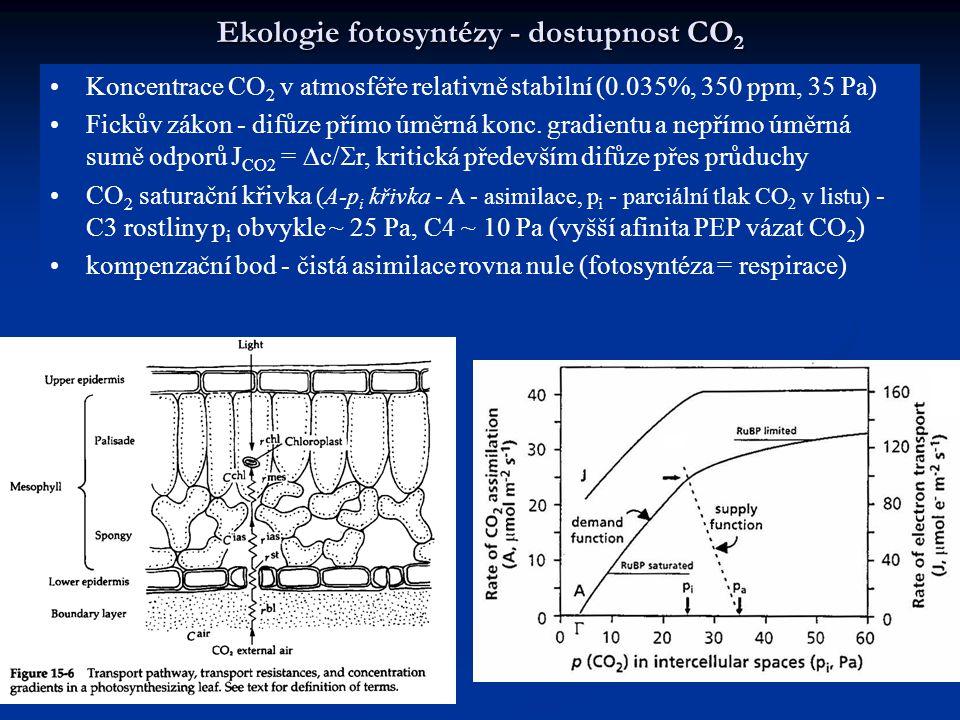 Ekologie fotosyntézy - dostupnost CO 2 Koncentrace CO 2 v atmosféře relativně stabilní (0.035%, 350 ppm, 35 Pa) Fickův zákon - difůze přímo úměrná kon