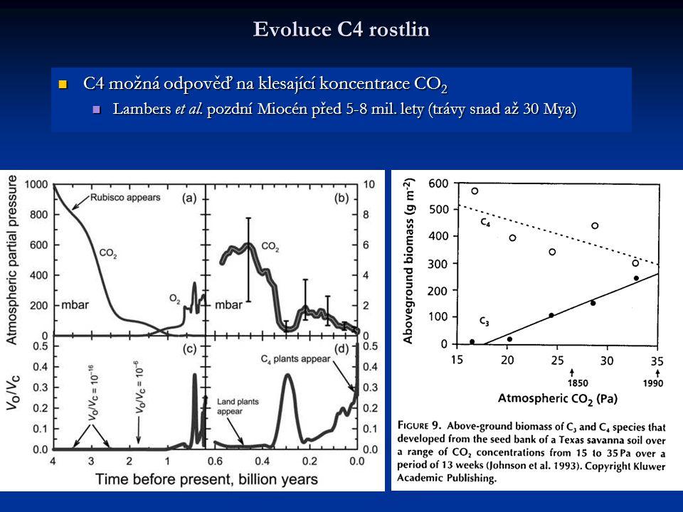 Evoluce C4 rostlin C4 možná odpověď na klesající koncentrace CO 2 C4 možná odpověď na klesající koncentrace CO 2 Lambers et al. pozdní Miocén před 5-8