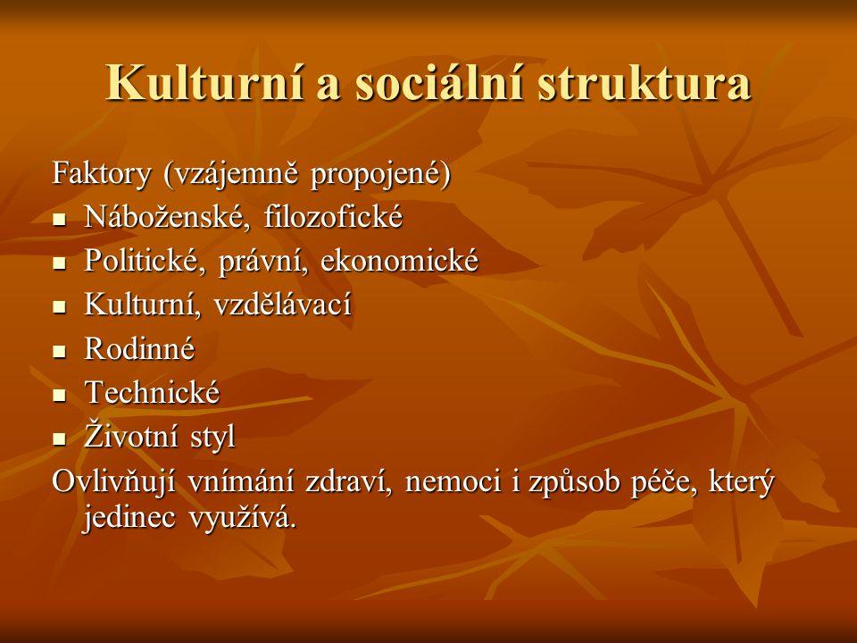Kulturní a sociální struktura Faktory (vzájemně propojené) Náboženské, filozofické Náboženské, filozofické Politické, právní, ekonomické Politické, pr