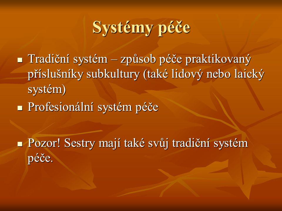 Systémy péče Tradiční systém – způsob péče praktikovaný příslušníky subkultury (také lidový nebo laický systém) Tradiční systém – způsob péče praktiko