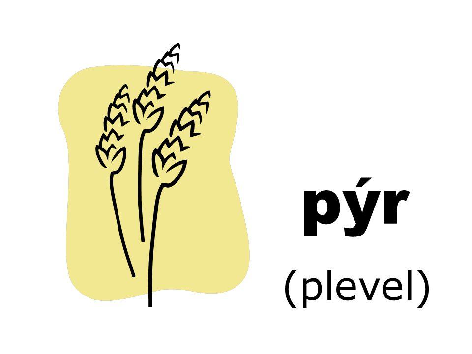 pýr (plevel)
