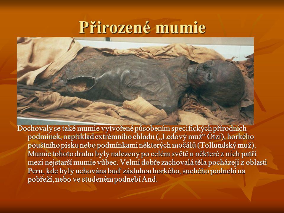 """Přirozené mumie Dochovaly se také mumie vytvořené působením specifických přírodních podmínek, například extrémního chladu (""""Ledový muž Ötzi), horkého pouštního písku nebo podmínkami některých močálů (Tollundský muž)."""