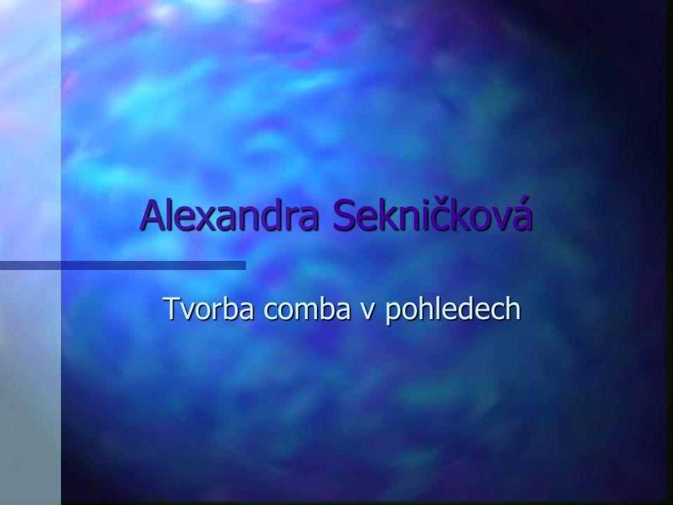 Alexandra Sekničková Tvorba comba v pohledech