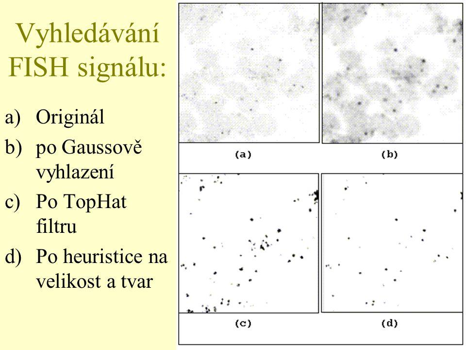 32 Vyhledávání FISH signálu: a)Originál b)po Gaussově vyhlazení c)Po TopHat filtru d)Po heuristice na velikost a tvar