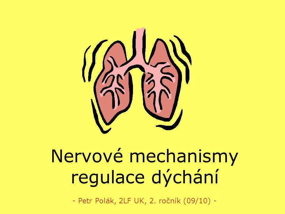 Nervové mechanismy regulace dýchání - Petr Polák, 2LF UK, 2. ročník (09/10) -