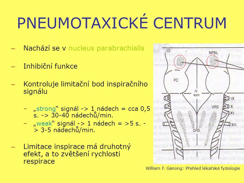 """PNEUMOTAXICKÉ CENTRUM – Nachází se v nucleus parabrachialis – Inhibiční funkce – Kontroluje limitační bod inspiračního signálu –""""strong signál -> 1 nádech = cca 0,5 s."""