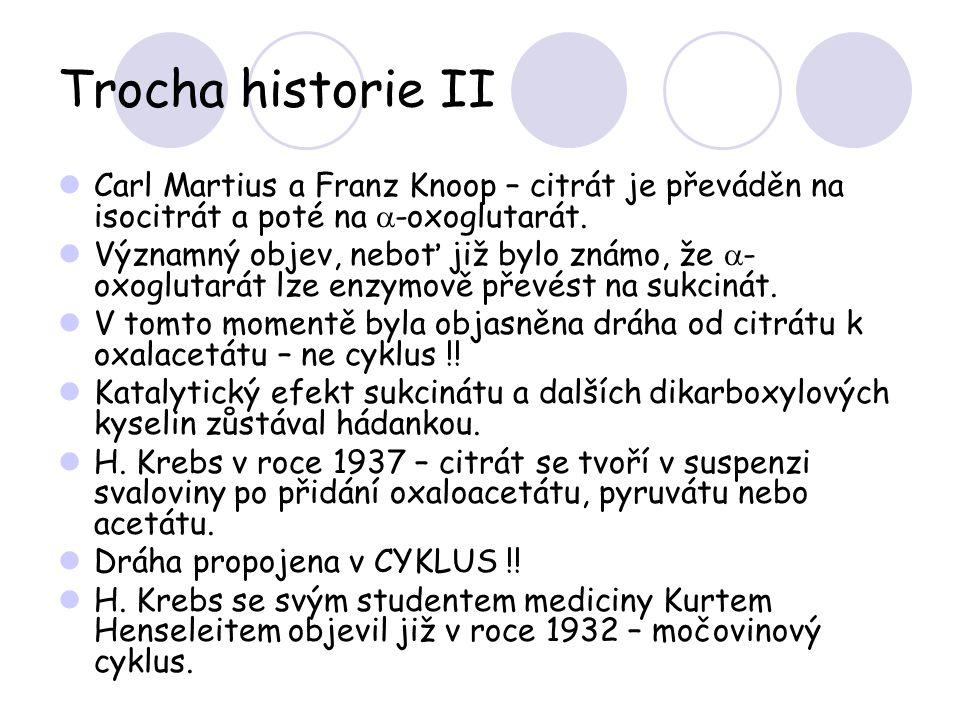 Trocha historie II Carl Martius a Franz Knoop – citrát je převáděn na isocitrát a poté na  -oxoglutarát. Významný objev, neboť již bylo známo, že  -