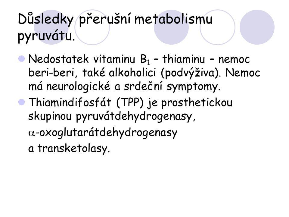 Důsledky přerušní metabolismu pyruvátu. Nedostatek vitaminu B 1 – thiaminu – nemoc beri-beri, také alkoholici (podvýživa). Nemoc má neurologické a srd